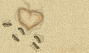 http://purcity.free.fr/hs/love.jpg